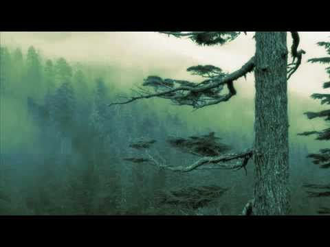 Agalloch - You Were But a Ghost in My Arms