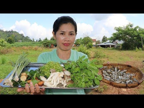 Awesome Cooking Fish With Vegetable (Mushroom)  Recipe – Cook Fish Recipes – Village Food Factory