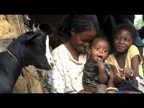 Kozy dělaly radost ženám v Kongu!