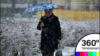 В Гидрометцентре рассказали о погоде в Москве на этой неделе