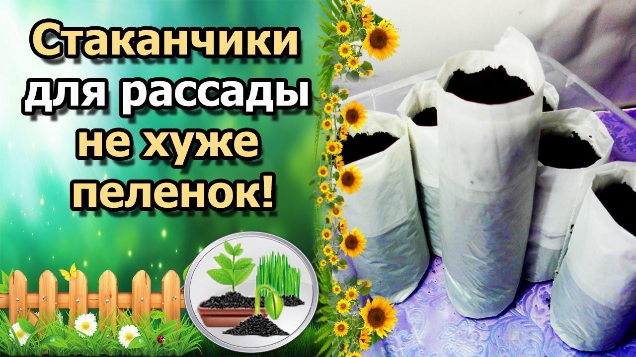 Caso zip 20х23 пакеты для вакуумного упаковщика, 20 шт. : купить с официальной гарантией в интернет-магазине ozon. Ru. У нас вы можете узнать.