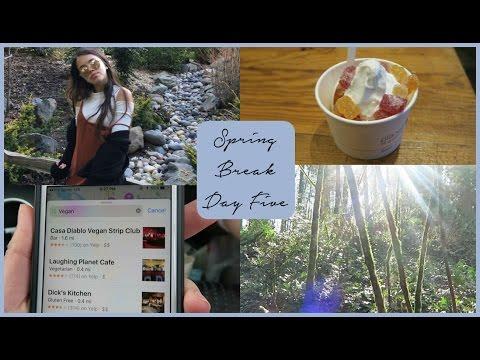 SPRING BREAK DAY 5 VLOG: Washington Park, Food Trucks, and Soft Serve!