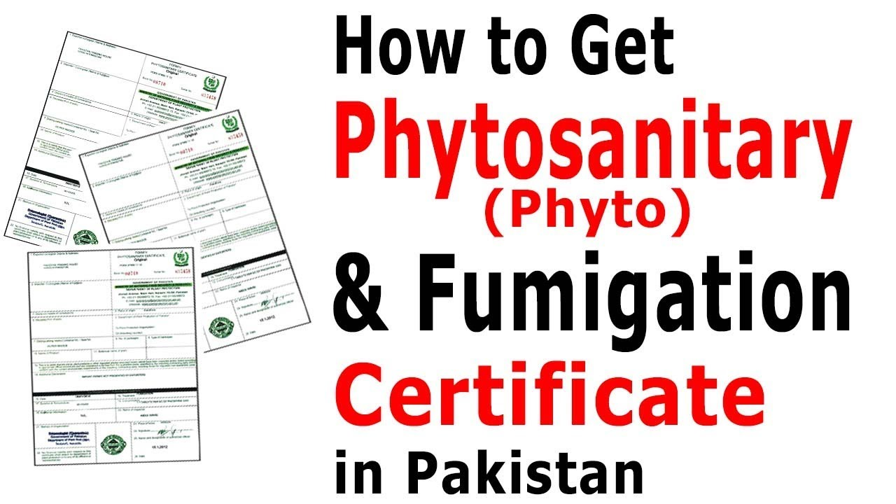 How to get phytosanitary certificate in pakistan procedure to get how to get phytosanitary certificate in pakistan procedure to get fumigation certificate in pakistan xflitez Gallery