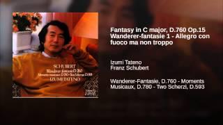Fantasy in C major, D.760 Op.15 Wanderer-fantasie 1 - Allegro con fuoco ma non troppo