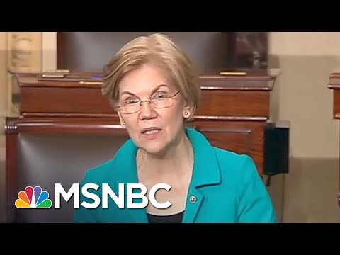 Senator Elizabeth Warren: I Want To See A Democratic Party That Picks Fights   All In   MSNBC