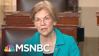 Senator Elizabeth Warren: I Want To See A Democratic Party That Picks Fights | All In | MSNBC