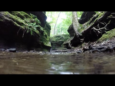 USA Road Trip - Nelson Ledges State Park