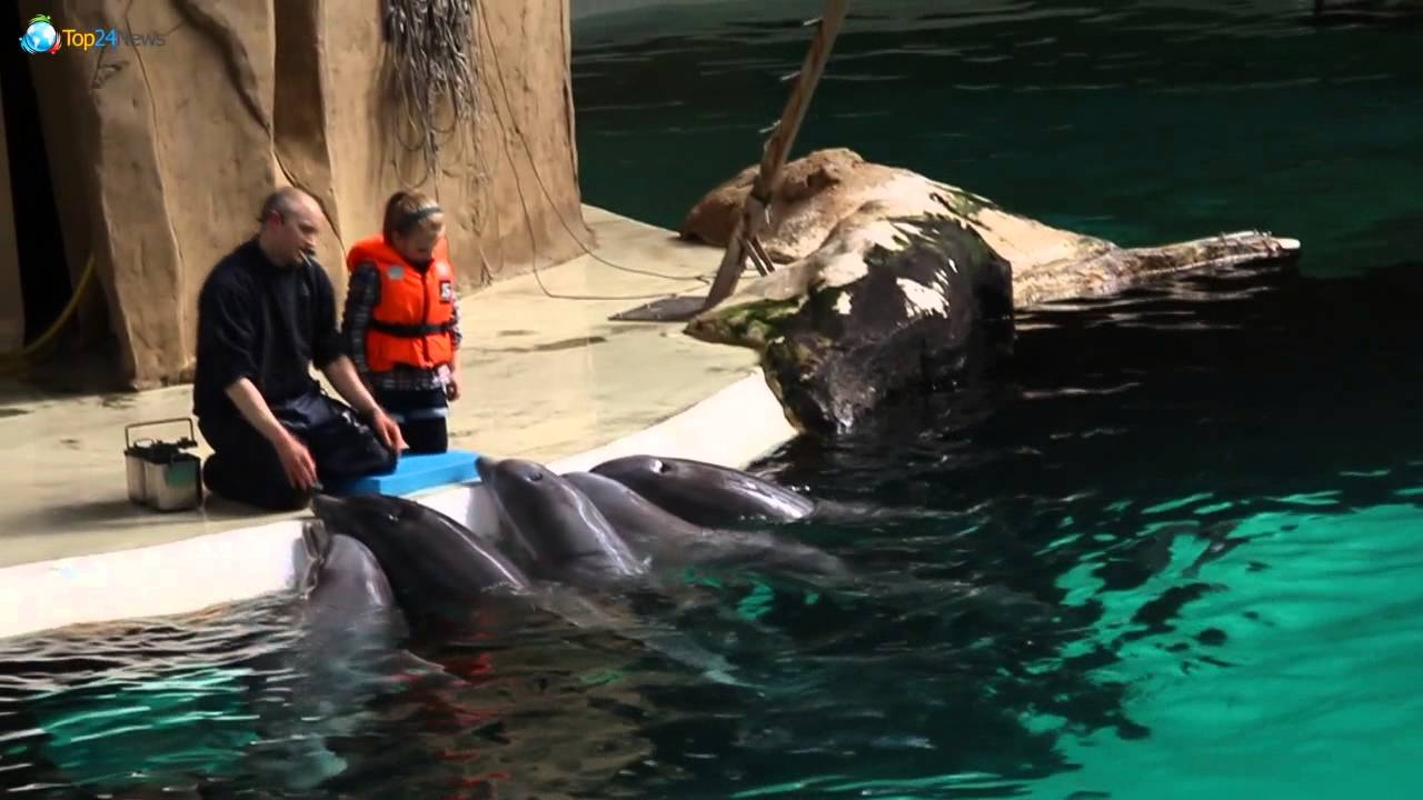 duisburger zoo öffnungszeiten