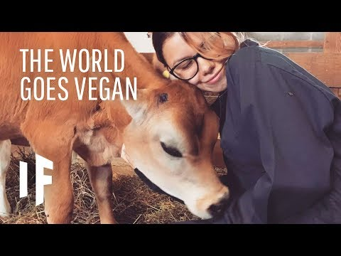 What If Everyone in the World Went Vegan?
