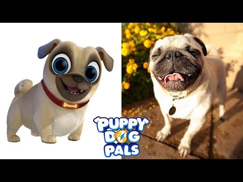 Puppy Dog Pals Characters In Real Life | All Characters 2017