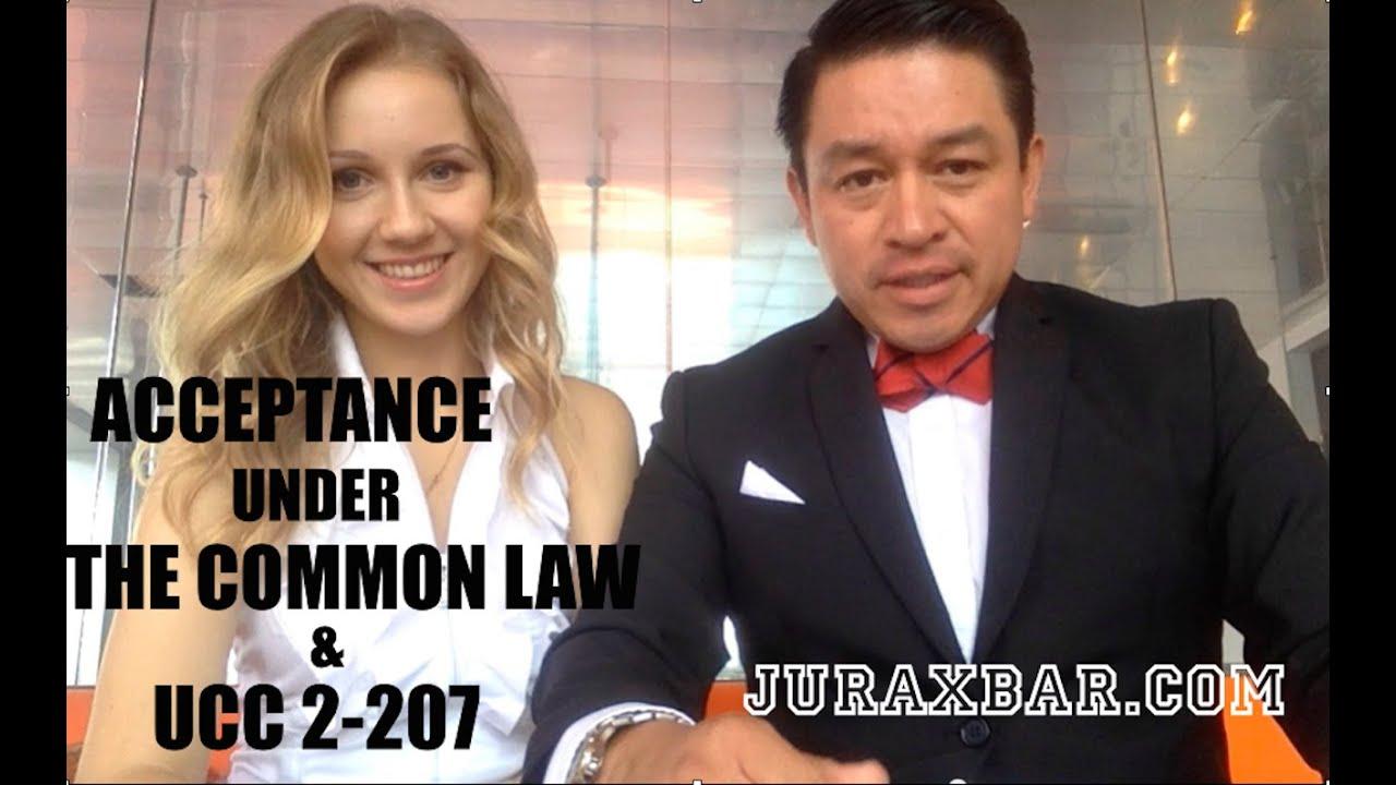 Common Law Staffel 2