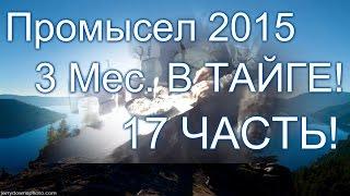 Промысел соболя в тайге 2015 видео