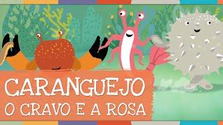 Palavra Cantada  Caranguejo - O Cravo e a Rosa