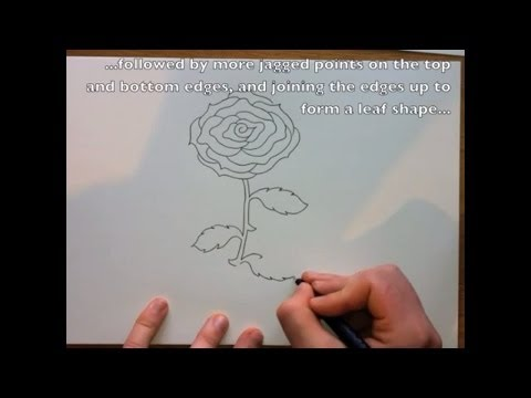 how to draw a rose easy step by step youtube