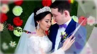 Свадьба Лисаковск Фото Видео съемка Костанайская область