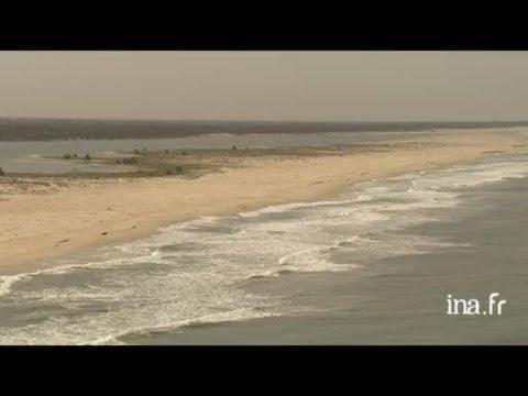 Sénégal : les pélicans blancs de la Langue de Barbarie