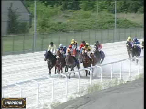 Horse Race 6 - MUSICAL FEUD (Patrick Deno) - Prix ...