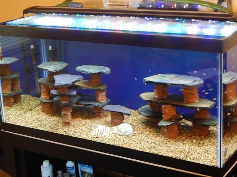 DIY/How To Make A Rock/slate/structure For A Fish Tank/aquarium