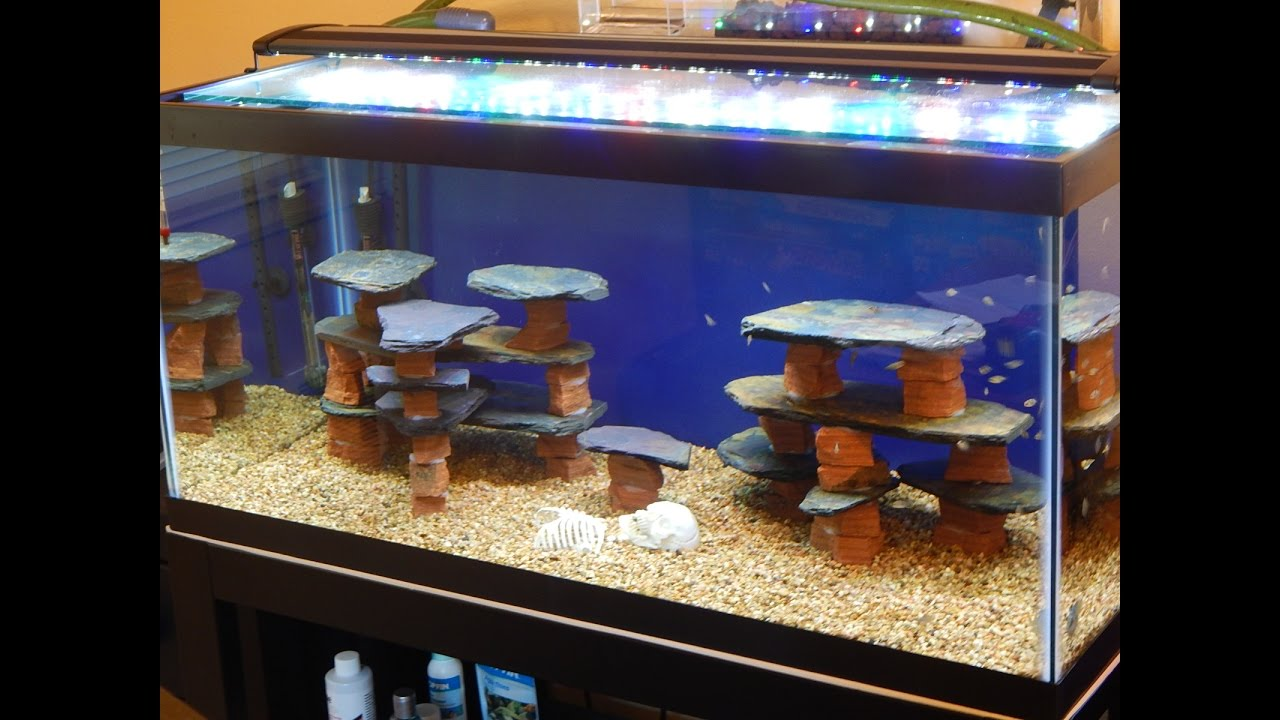 Diy how to make a rock slate structure for a fish tank for Aquarium decoration paint