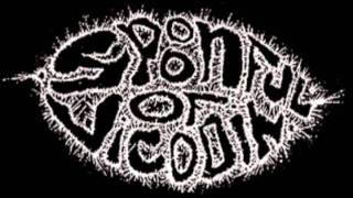 Spoonful Of Vicodin - Designer Track Marks