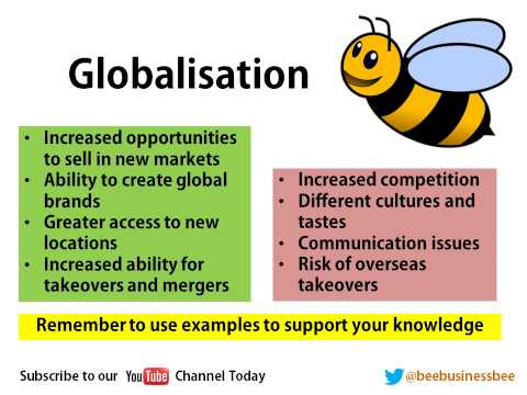 Bee Business Bee Globalisation and Emerging Markets Presentation