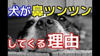 チャンネル登録を御願いします☆→http://ur0.pw/Gf0q 今回はリニューアル...