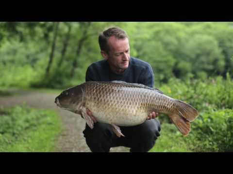 Mainline Baits TV Game Changer: That'll Be The Balanced Wafters