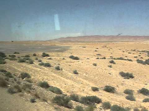desert travelling homs Palmyra