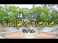 *踊ってみた* sunlight avenue *なっつん*