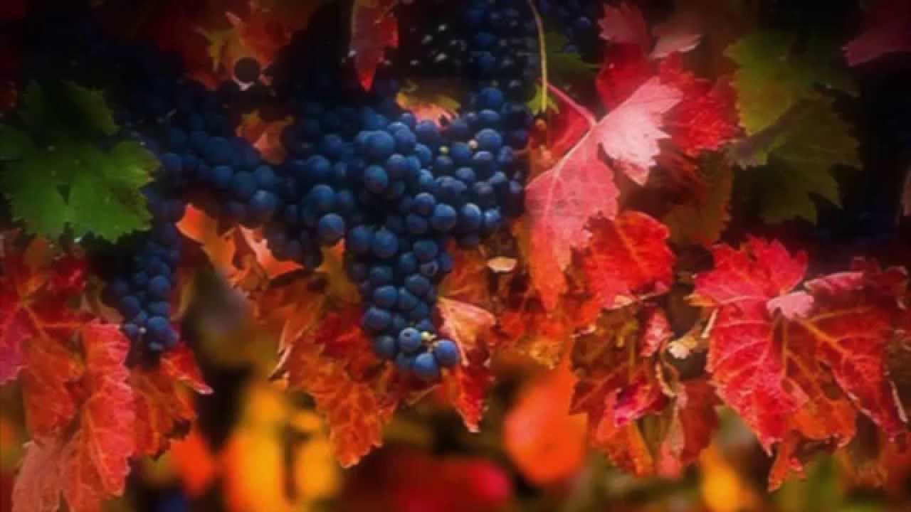 To Autumn John Keats: 'To Autumn'