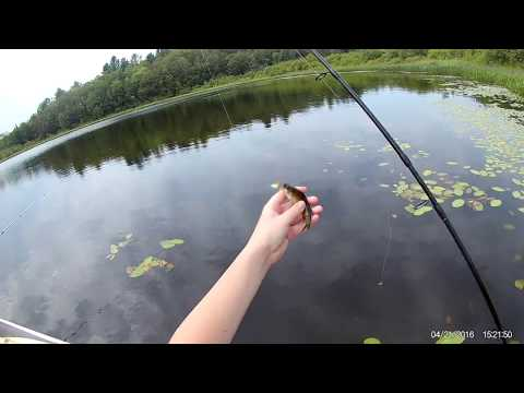 Fishing On Mill Pond