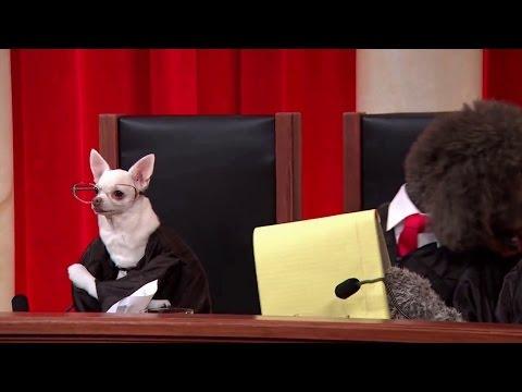 Perry v. New Hampshire: Oral Argument - November 02, 2011