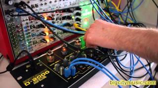 Metasonix D-2000, Tiptop Circadian Rhythms eurorack