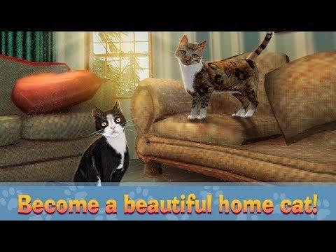 🐈Home Cat Survival Simulator 3D-Домашний симулятор выживания для кошек- Android