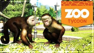 ZOO TYCOON : enfin des ANIMAUX HEUREUX ! #3 (Zoo Tycoon: Ultimate Animal Collection)