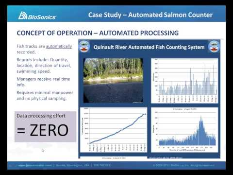 BioSonics Automated Hydroacoustic Monitoring Systems