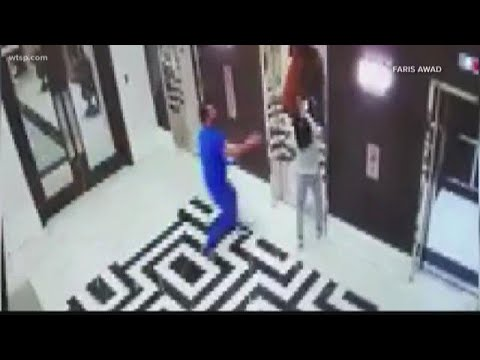 Brody - Tampa Doctor Saves Dog From Elevator Doom!