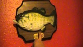 Billy Bass is dying