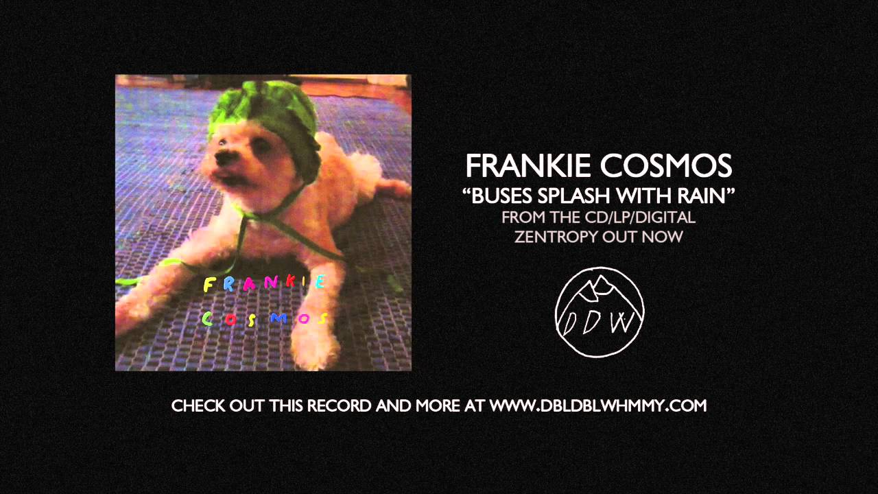 frankie-cosmos-buses-splash-with-rain-double-double-whammy-1471171281