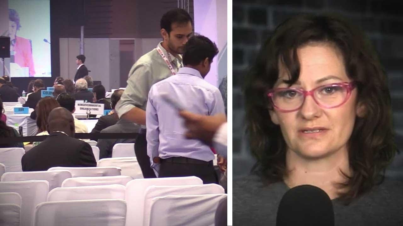Canuck diplomats inhale, expense minibar junk food at UN health conference | Sheila Gunn Reid