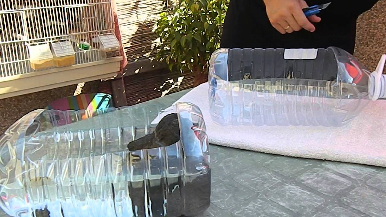 Tortuguera reciclada solo uso provisional youtube for Expo casa y jardin 2015 wtc