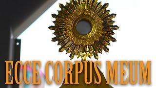 聖體出遊 - Procession of Corpus Christi