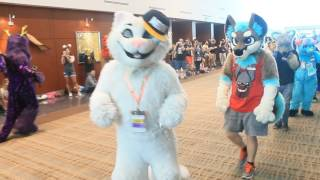 Califur 2016 Fursuit Parade