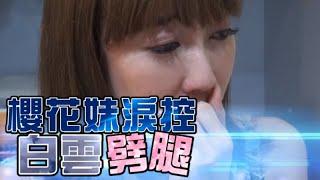 櫻花妹淚控白雲劈腿「偷吃還是接受他」| 台灣蘋果日報