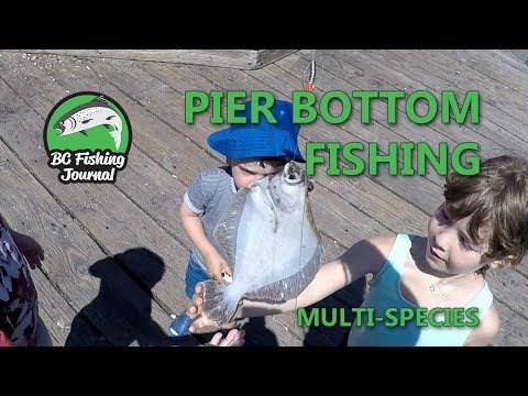 How To Fish For Flounder, Bottom Fish And Crab