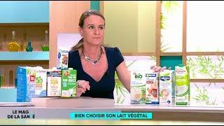 Comment bien choisir son lait végétal ? - Le Magazine de la santé