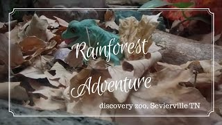 Rainforest Adventure Discovery Zoo | Sevierville TN | Great Smoky Mountains Vacation