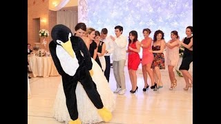 PENGUINE DANCE ALBANIA(20.07.2013 @HERA RESORT, ALBANIA (i am the brides brother, the first one dressed like penguine) In 2010 i promissed my sister that this dance was going to ..., 2013-09-28T14:35:27.000Z)