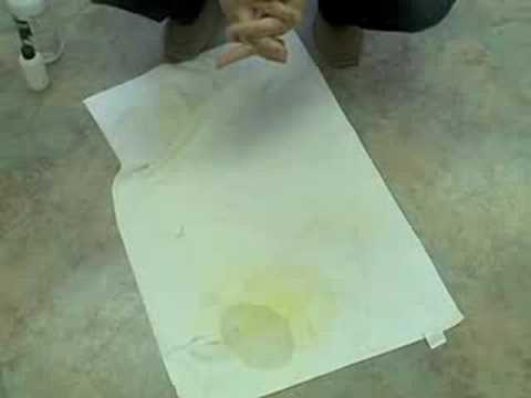 How To Get Old Pet Stains Out Of Berber Carpet Www