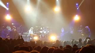 Toto Torino 2016 Afraid of Love 4k